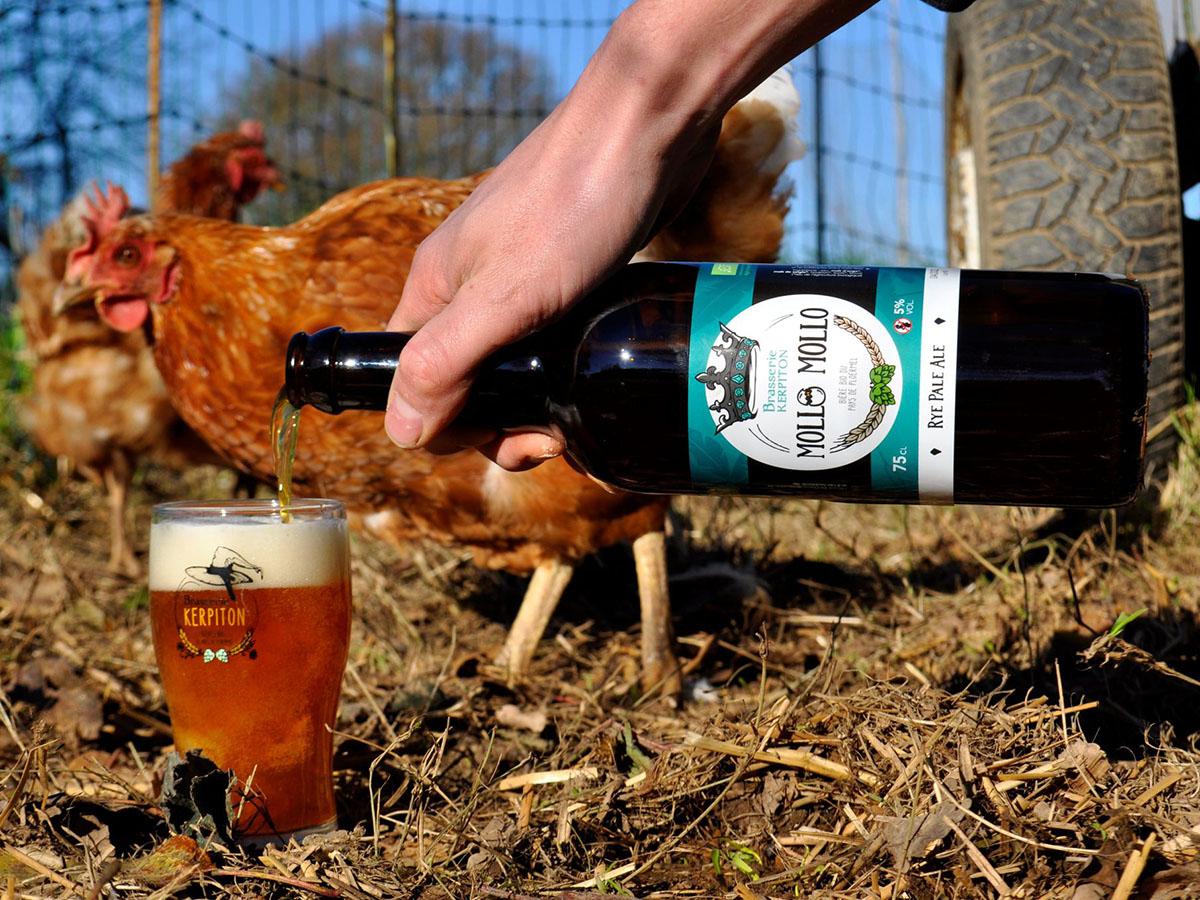 Brasserie Kerpiton et les poules